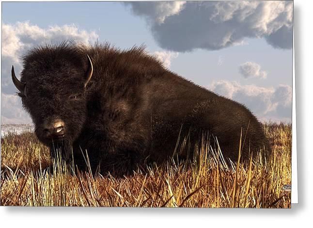 Western Themed Digital Art Greeting Cards - Resting Buffalo Greeting Card by Daniel Eskridge
