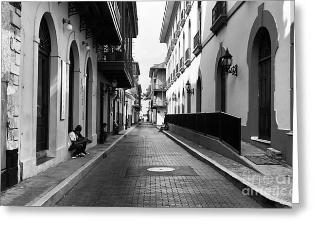 Resting In Casco Viejo Mono Greeting Card by John Rizzuto