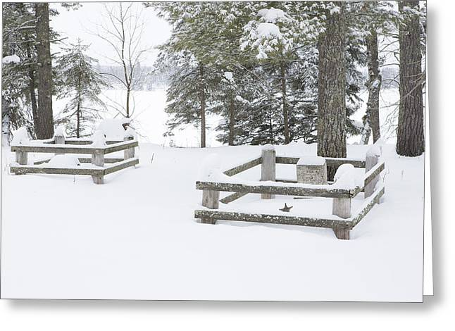 Pinus Resinosa Greeting Cards - Resting in Peace Greeting Card by Tim Grams