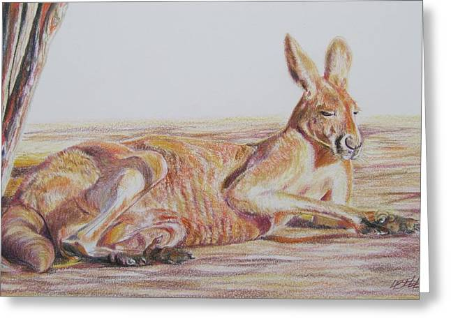 Kangaroo Drawings Greeting Cards - Resting Kangaroo Greeting Card by Leonie Bell