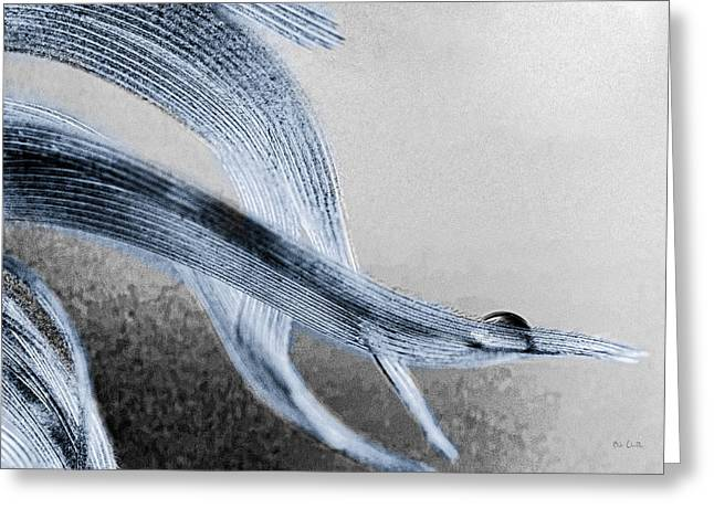 Contemporary Abstract Photographs Greeting Cards - Resting On A Feather Greeting Card by Bob Orsillo