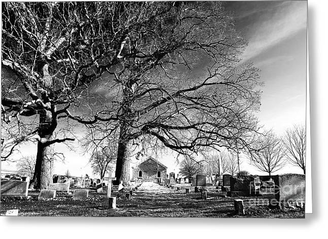 Resting Place Greeting Cards - Resting Place Greeting Card by John Rizzuto