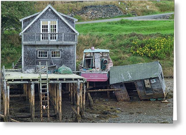 Old Maine Houses Greeting Cards - Resting Place of Killer the Boat Greeting Card by Carol Sweasy