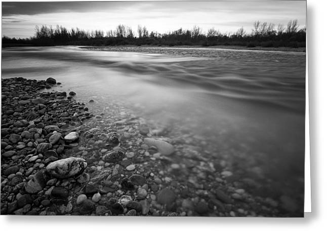 Greyscale Greeting Cards - Restless river Greeting Card by Davorin Mance