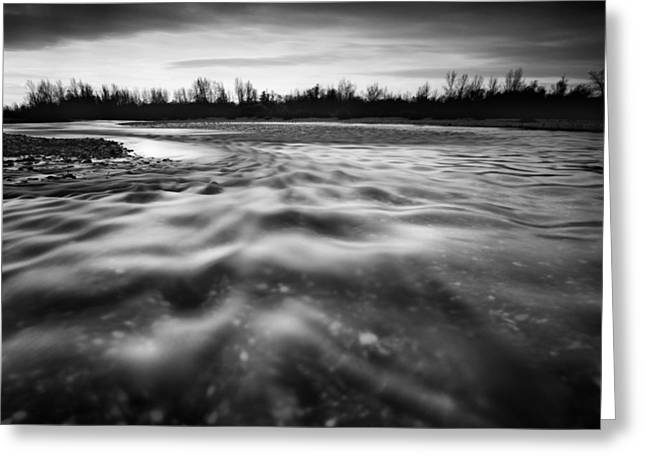 Greyscale Greeting Cards - Restless river II Greeting Card by Davorin Mance