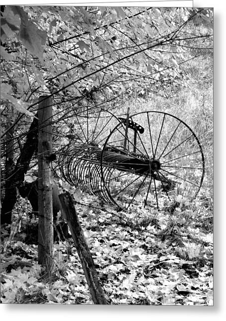 Intrigue Greeting Cards - Retired Hay Rake Greeting Card by Will Borden