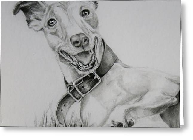 Retired Racer Greeting Card by Jean Cormier