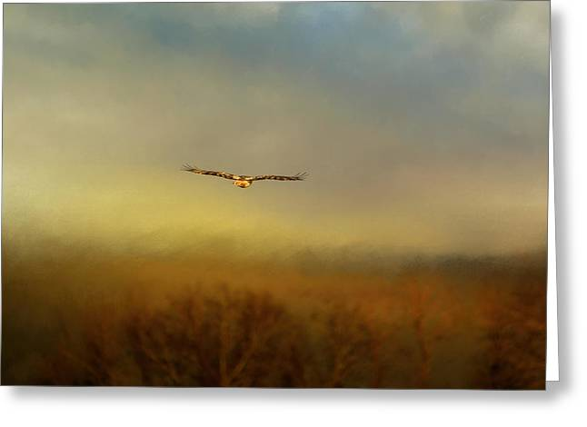 Hawk In Flight Greeting Cards - Retreating Red Tail Greeting Card by Jai Johnson