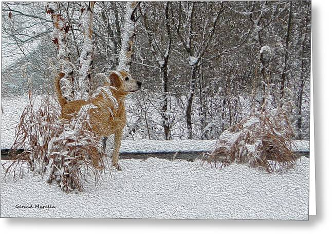 Dogs In Snow. Digital Art Greeting Cards - Retriever And Fresh Snowfall Greeting Card by Gerald Marella