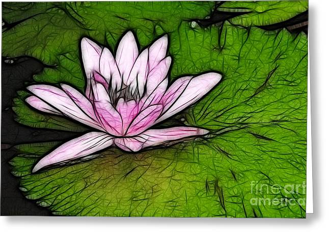Water Lilly Greeting Cards - Retro Water Lilly Greeting Card by Bob Christopher