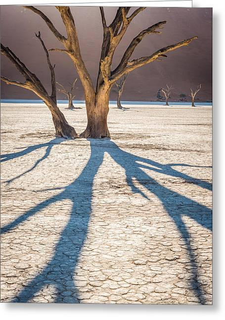 Desolate Greeting Cards - Return of the Shadow of the Camel Thorn - Dead Vlei Photograph by Duane Miller Greeting Card by Duane Miller