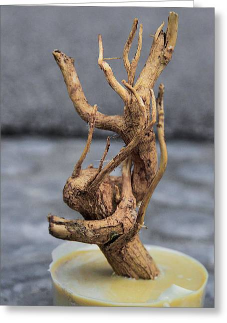 Empower Sculptures Greeting Cards - Reunite Greeting Card by Ayse Thornett