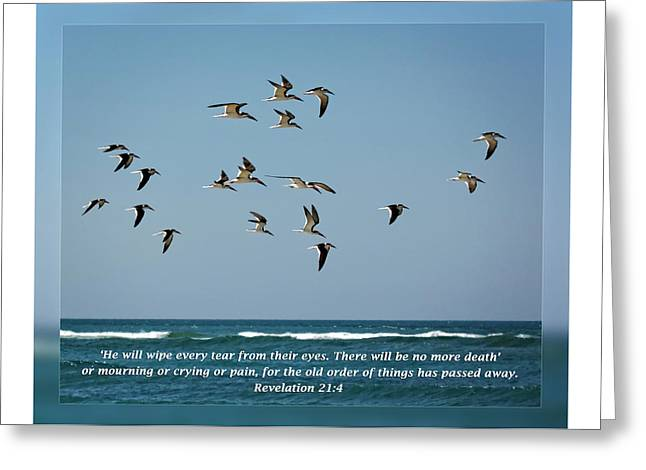 Forgiveness Greeting Cards - Revelation 21 4 Greeting Card by Dawn Currie