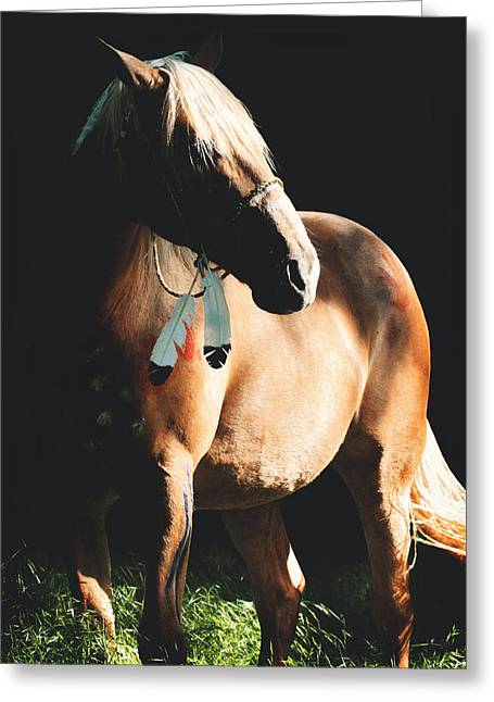 Shadow Horse Studios Greeting Cards - Reverie Greeting Card by Lyndsey Warren