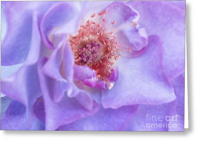 Rhapsody In Blue Greeting Card by Irina Wardas