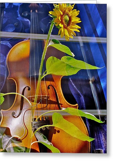 Violin Case Greeting Cards - Rhapsody in Yellow Greeting Card by Farhad VakiliTabar