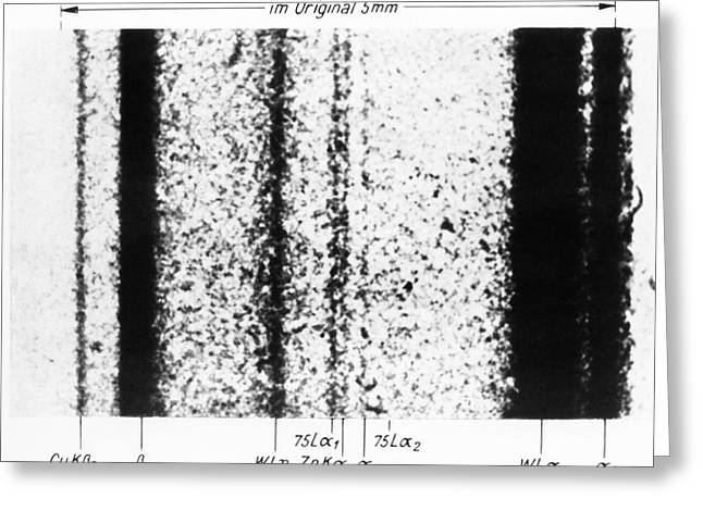 Rhenium Spectral Lines Greeting Card by Emilio Segre Visual Archives/american Institute Of Physics
