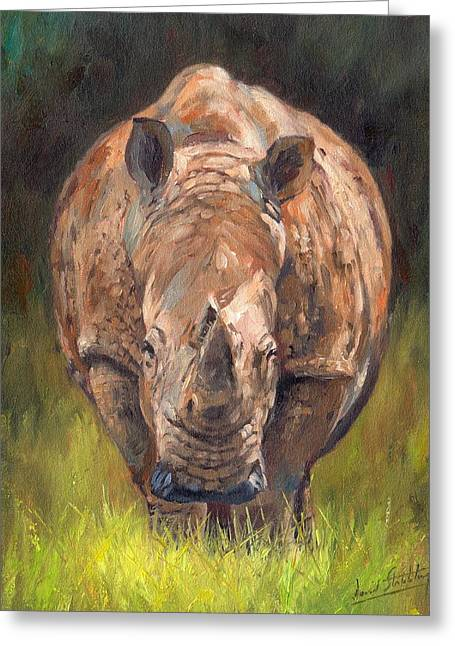 Rhinos Greeting Cards - Rhino Greeting Card by David Stribbling