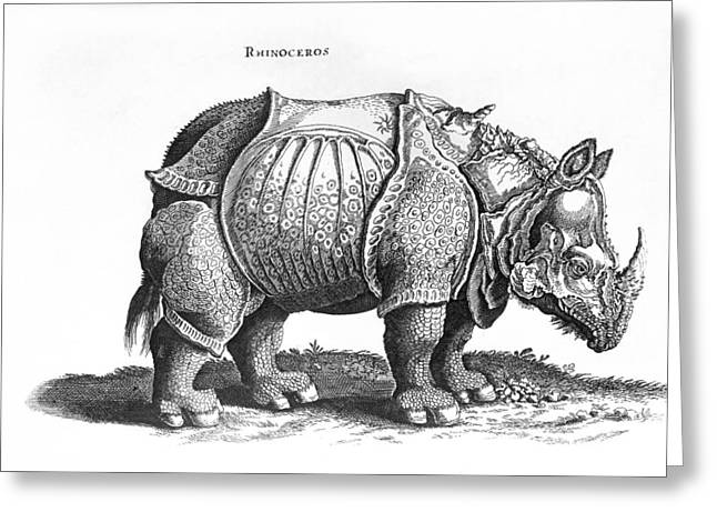 Rhinos Greeting Cards - Rhinoceros no 76 from Historia Animalium by Conrad Gesner  Greeting Card by Albrecht Durer