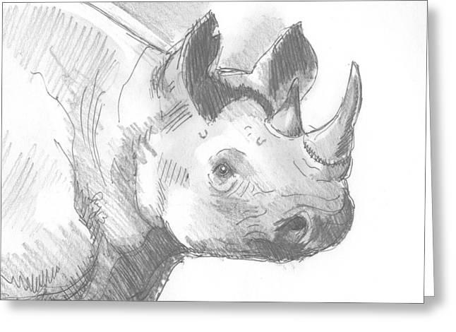 Rhinoceros Drawings Greeting Cards - Rhinoceros sketch Greeting Card by Mike Jory