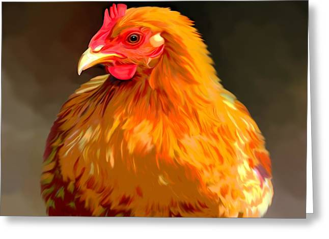 Chicken Greeting Cards - Rhode Island Red  Greeting Card by Karen Sheltrown