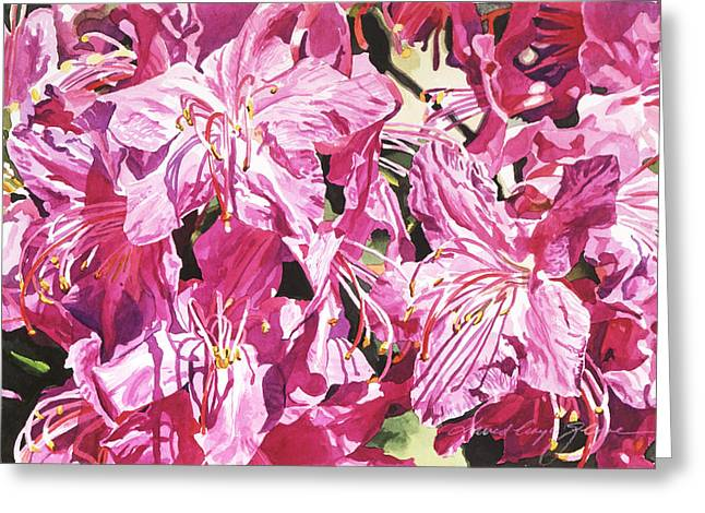 Best Sellers Paintings Greeting Cards - Rhodo Blossoms Greeting Card by David Lloyd Glover