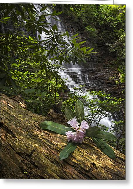 Rhododendron At The Falls Greeting Card by Debra and Dave Vanderlaan