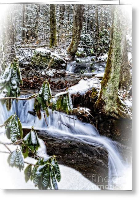 Rhododendron Waterfall Winter Greeting Card by Thomas R Fletcher