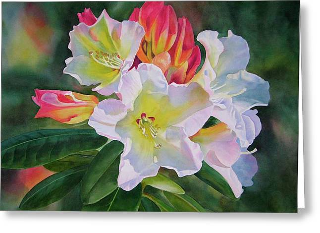 Realistic Watercolor Greeting Cards - Rhododendron with Red Buds Greeting Card by Sharon Freeman