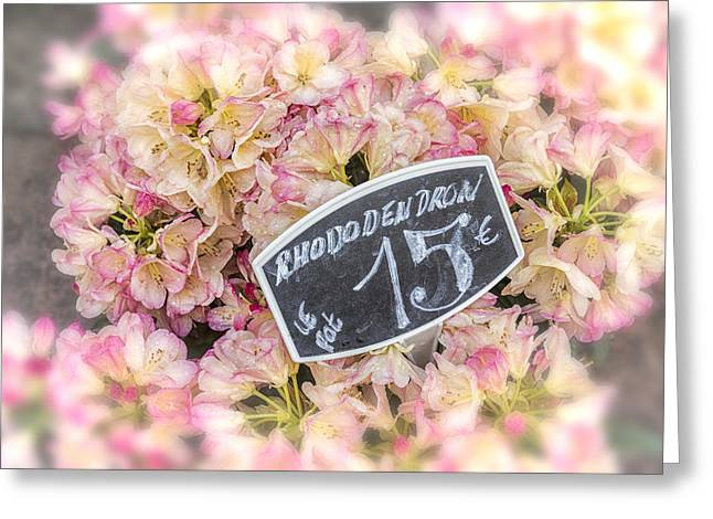 Pink Flower Prints Greeting Cards - Rhododendrons For Sale Greeting Card by Nomad Art And  Design