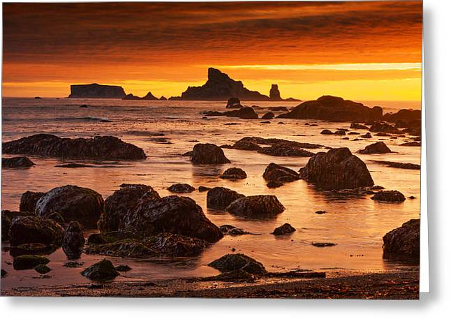 Olympic National Park Greeting Cards - Rialto Beach Sunset Symphony Greeting Card by Mark Kiver