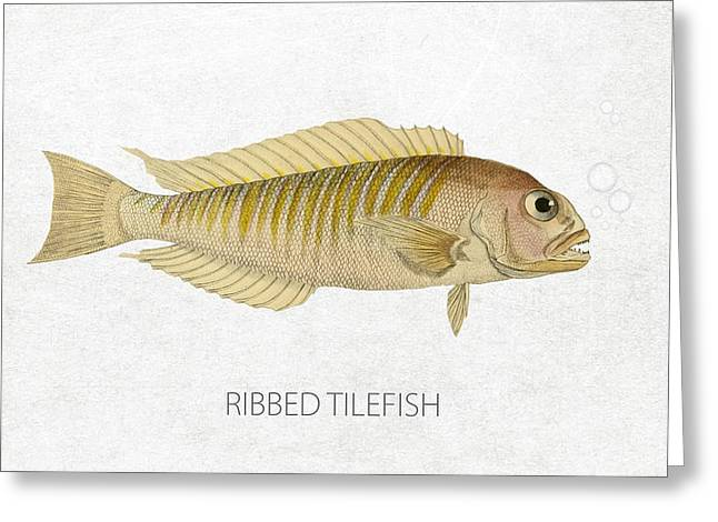 Aquarium Fish Digital Greeting Cards - Ribbed tilefish Greeting Card by Aged Pixel