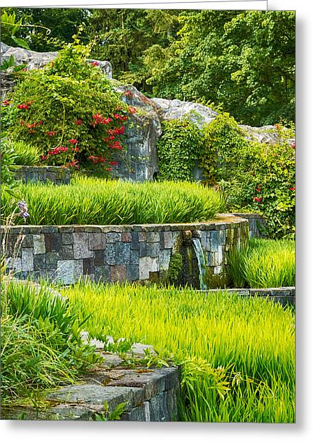 Interior Scene Photographs Greeting Cards - Rice Garden Greeting Card by Wim Lanclus