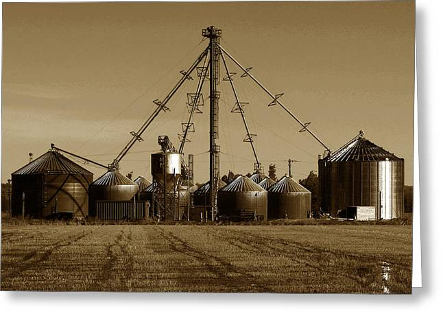 Bayliss Greeting Cards - Rice Silos 3 Greeting Card by Robert Woodward