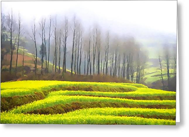 Asean Greeting Cards - Rice terraced fields in Yuan Yang Greeting Card by Lanjee Chee