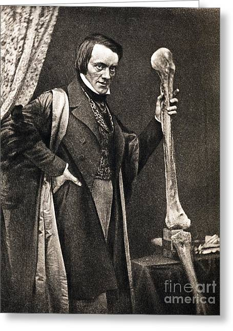 Moa Greeting Cards - Richard Owen And Moa Leg Fossil Greeting Card by Paul D. Stewart
