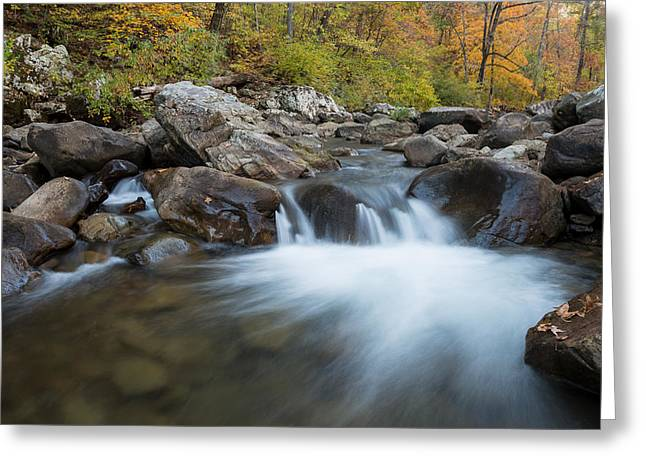Arkansas Greeting Cards - Richland Creek Autumn Cascade Greeting Card by Matthew Parks