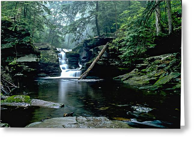 Lush Green Digital Greeting Cards - Ricketts Glen falls 016 Greeting Card by Scott McAllister
