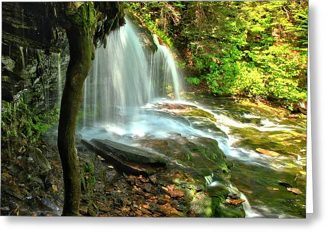 Mohawk Park Greeting Cards - Ricketts Glen Mohawk Falls Greeting Card by Adam Jewell
