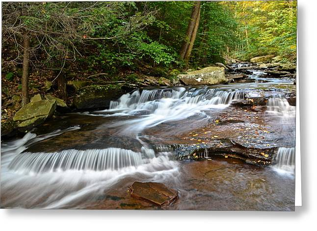 Marvelous View Greeting Cards - Ricketts Glen Greeting Card by Frozen in Time Fine Art Photography