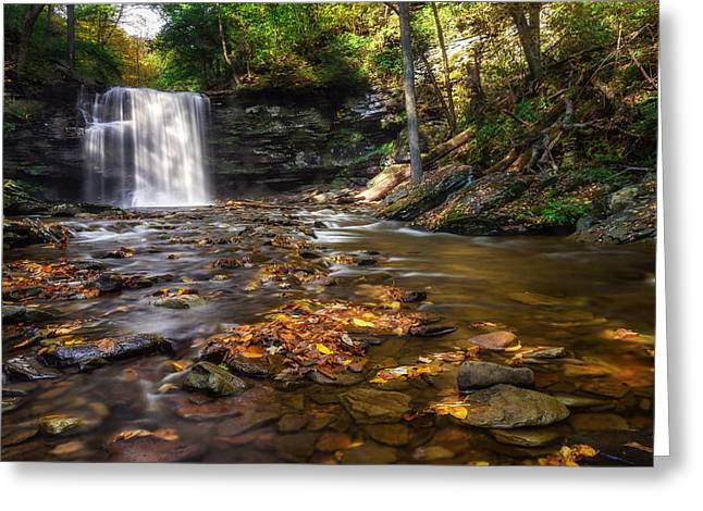 Fallen Leaf Greeting Cards - Ricketts Glen Waterfall Greeting Card by Mark Papke