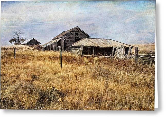 Outbuildings Greeting Cards - Rickety Barn And Woodshed Greeting Card by Theresa Tahara