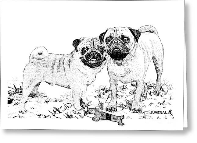 Toy Dog Drawings Greeting Cards - Ricky and Curly Greeting Card by Joseph Juvenal