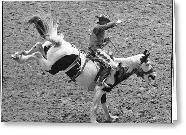 Bucking Horses Greeting Cards - Ride Em Cowboy Greeting Card by Stephen Stookey