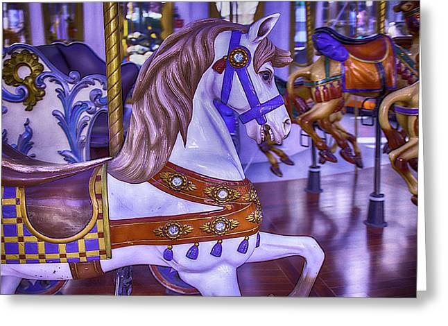 Magical Greeting Cards - Ride The White Horse Greeting Card by Garry Gay