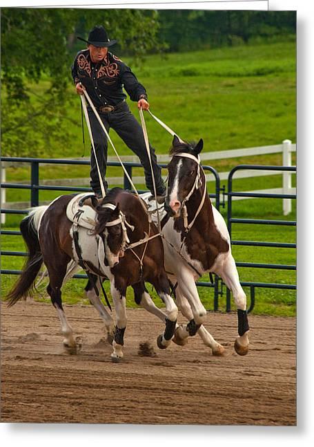 Tricks Greeting Cards - Ride Them Cowboy Greeting Card by Karol  Livote