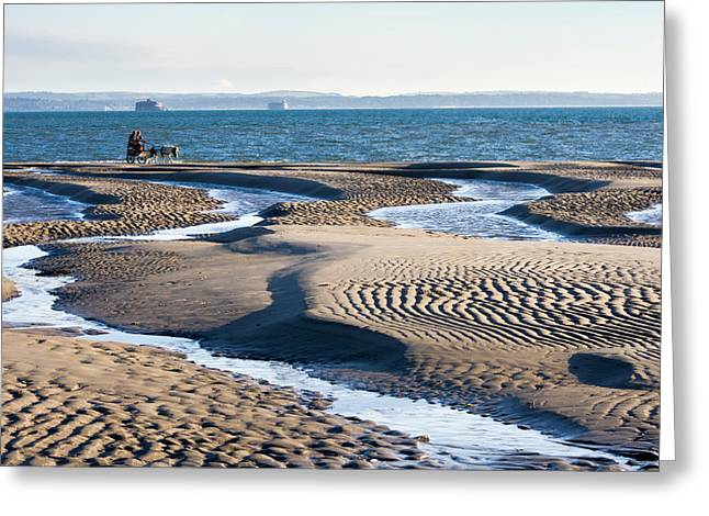 Sand Patterns Greeting Cards - Ride upon the sands Greeting Card by Trevor Wintle