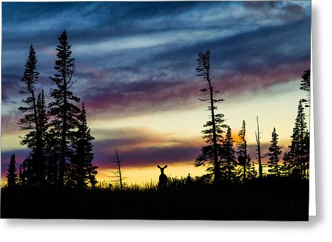 Ridges Greeting Cards - Ridge Sihouette Greeting Card by Chad Dutson
