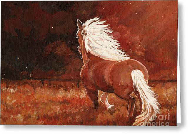 Lone Horse Greeting Cards - Riding The Night Wind Greeting Card by MarLa Hoover