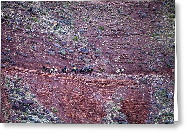 South Kaibab Trail Greeting Cards - Riding through the Dox Greeting Card by Tom Brownold